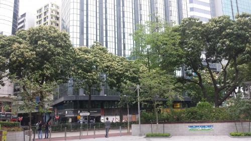 A Hong Kong verde, bonita e moderna